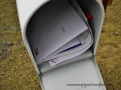 Mail in the box