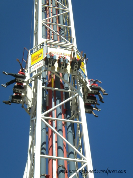 Hubby and daughter got on this contraption that took them up - way up!