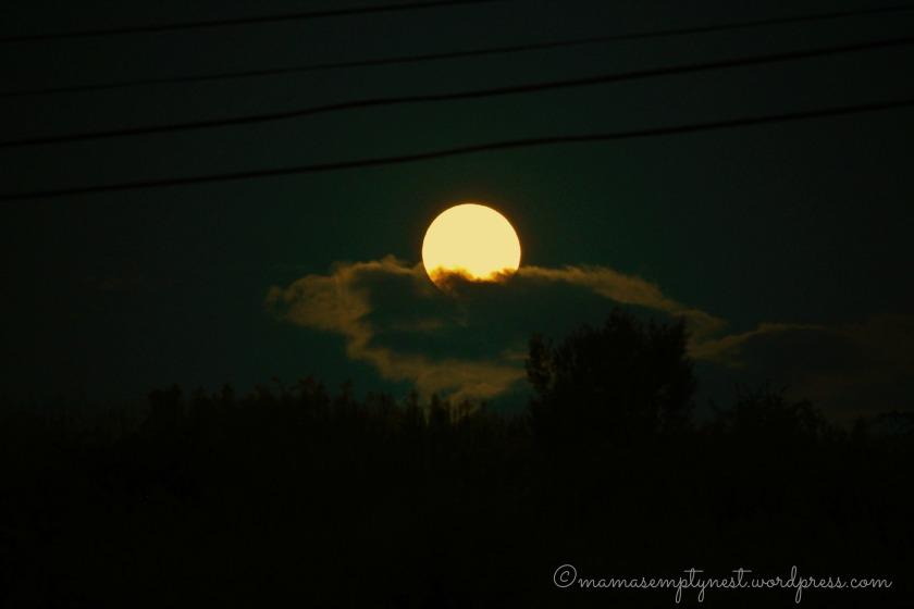 Monday's harvest moon