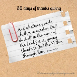 30 days of thanks3