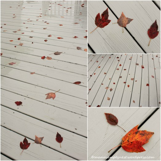 blogFallLeafCollage