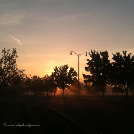 blogIMG_0872
